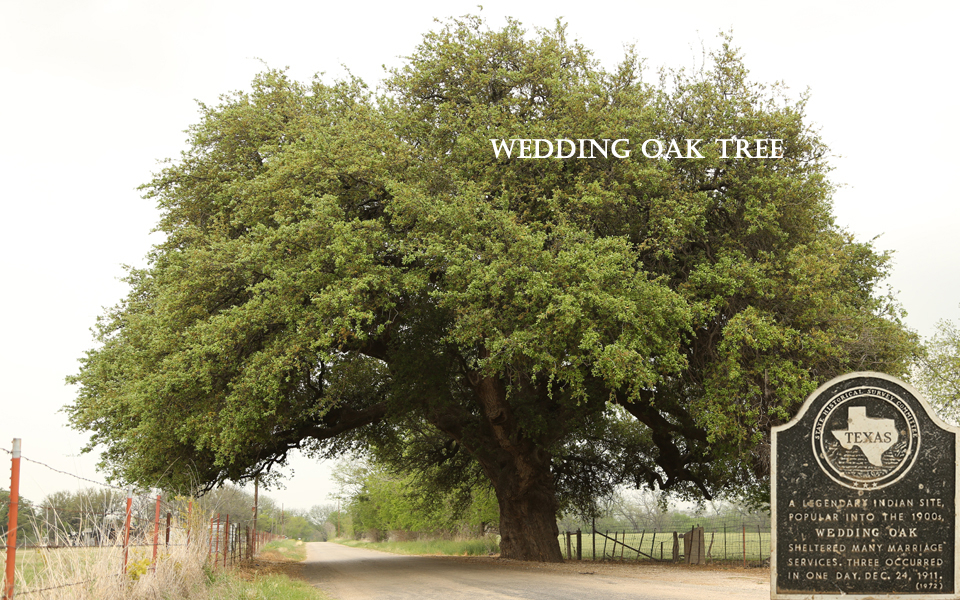 city_slide_wedding_oak