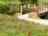 city_slide_naturepark-jpg