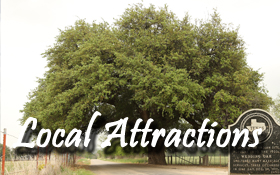 local attractions