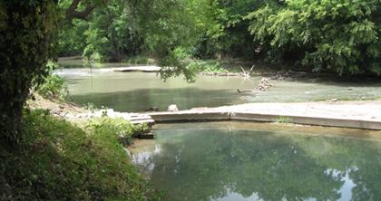 Risien Park River Pool Vista