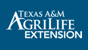 County Agrilife Ext 4-H Food & Nutrition Workshop-Nutrition @ Housing Authority City of San Saba | San Saba | Texas | United States